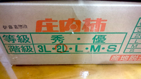 DSC_0629blog